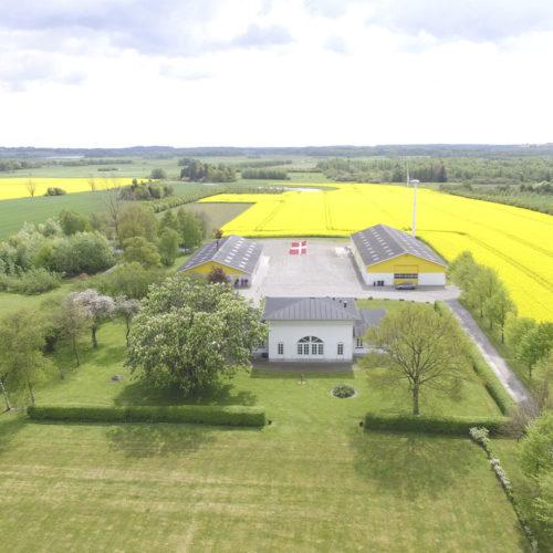 Vingård med hvidt stuehus og gule haller. Gule marker og en husvindmølle.